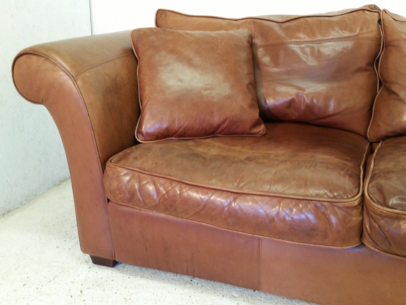 aktuelles angebot chesterfields von kluge. Black Bedroom Furniture Sets. Home Design Ideas